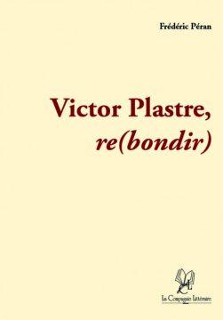 victor-plastre-510x732